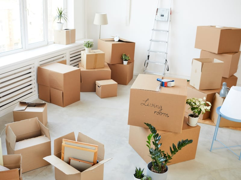 This Week's Top Stories On Business Moving Company
